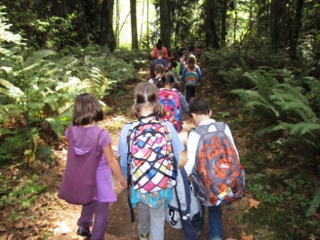 Students on a trail hike